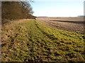 SU0670 : Unofficial bridleway, Yatesbury Field by Vieve Forward