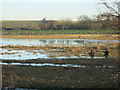 TL4279 : Incompetent wildfowlers on Ouse Washes by Hugh Venables