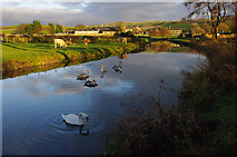 SD5383 : Lancaster Canal, Crooklands by Ian Taylor