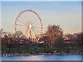 TQ2780 : Big Wheel across the Serpentine by Chris Denny