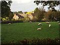 SP0475 : Lea End Farm, Lea End, catches the sun by Robin Stott