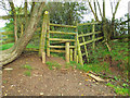 SP0574 : Damaged and difficult stile below Swan's Hill by Robin Stott