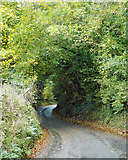 SP0575 : Lea End Lane climbs to Forhill by Robin Stott