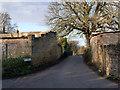 SK4960 : Dawgates Lane, Skegby by Alan Murray-Rust