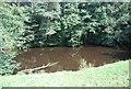 SE3258 : River Nidd by N Chadwick