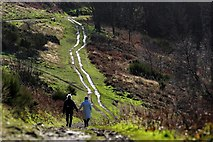 SO7641 : The shining path by Bob Embleton