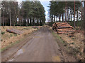 SU2704 : Forestry work in Poundhill Inclosure by Hugh Venables