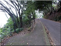 SX9363 : Kissing gate and path into woodland, Lincombe Drive, Torquay by David Smith