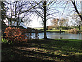 TG0517 : The millpond at Elsing Mill by Adrian S Pye