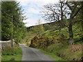 NU0724 : Road, Hepburn Moor by Richard Webb