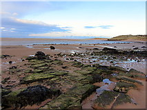 NU1535 : Budle Bay west of Heather Cottages by Andrew Curtis