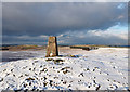 NY5910 : Trig point of Ravensworth Fell by Trevor Littlewood