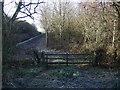 TA0854 : Woodland beside Nafferton Drain by JThomas