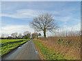 TG0211 : Cutthroat Lane, Yaxham by Adrian S Pye