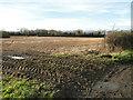 TG0211 : Muddy field entrance by Adrian S Pye