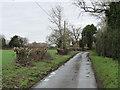 TG0616 : Slashed hedges at Primrose Green by Adrian S Pye