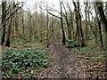 TQ7661 : Cossington Road, Walderslade by Chris Whippet