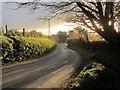 SX2669 : Road to Crow's Nest by Derek Harper