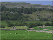 SD9771 : Stone barns at Hawkswick Head, S of Kettlewell by Colin Park