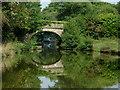 SJ9380 : Braddocks Bridge south of Wood Lanes, Cheshire by Roger  Kidd