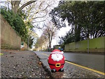 SX9392 : A pedestrian in Victoria Park Road, Exeter by David Smith