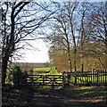 TL4638 : Sunshine on Christmas morning by John Sutton