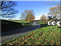 SJ8664 : Double bend on A536 between Eaton & Congleton by Colin Park