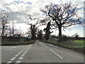 TG4102 : Road junction near Reedham by Adrian S Pye