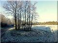 H4772 : Frosty fields, Mullaghmore by Kenneth  Allen
