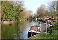 TL4659 : Sunny Christmas Day on the River Cam by Alan Murray-Rust