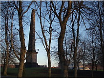 NS5964 : Nelson's Monument, Glasgow Green by Alec MacKinnon