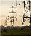 SD4953 : Powerlines by Peter McDermott