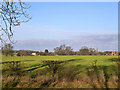 TL6928 : View north from Great Saling - Great Bardfield road by Robin Webster