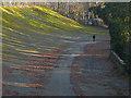 TQ0763 : Brooklands racing circuit by Alan Hunt