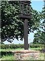 TG2303 : Caistor St. Edmund village sign by Adrian S Pye