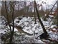 SE2704 : Footbridge over stream by Steve  Fareham