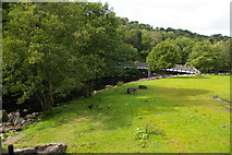 NY7962 : River Allen: footbridge at Plankey Mill by Christopher Hilton