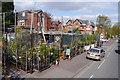 SJ8294 : Business selling plants - Wilbraham Road, Chorlton by Phil Champion