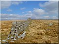 NY8641 : Wall on Sedling Fell, Cowshill, Stanhope by Andrew Smith