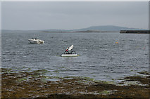 M2208 : Ballyvaughan Harbour by Ian Capper