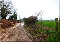 SU6615 : Footpath going west near Glidden Farm by Shazz
