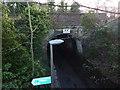 SJ6587 : Halfacre Lane Aqueduct by Richard Cooke