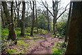 SO9379 : A footpath in woodland at Nag Hill by Phil Champion