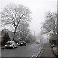 TL4555 : Sedley Taylor Road: frost and fog by John Sutton