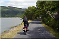 SH6516 : Cycling on the Mawddach Trail alongside Coed-y-garth by Phil Champion