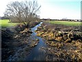 SP7915 : The River Thame north of Aylesbury by Bikeboy