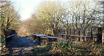 SK6052 : Vicinity of A614/Longdale Lane Junction, Notts. by David Hallam-Jones