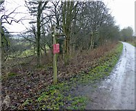 SK2071 : Monsal Trail direction sign post to Great Longstone by Steve  Fareham