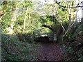 SK0347 : Overbridge on the 1847 Caldon Low tramroad by Ian Calderwood