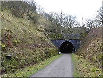 SK1273 : Chee Tor tunnel eastern portal on the Monsal Trail by Steve  Fareham
